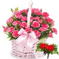 카네이션바구니 (꽃행복340호)