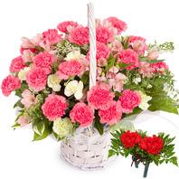 카네이션바구니 (꽃행복338호)